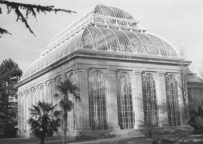 Black & White Photograph, Glasshouse