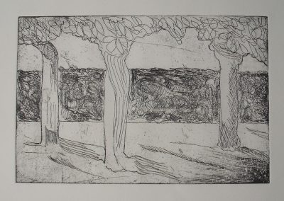 Trees, Etching